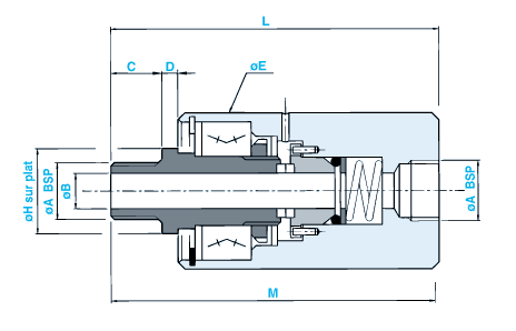 SN25 modèle droit